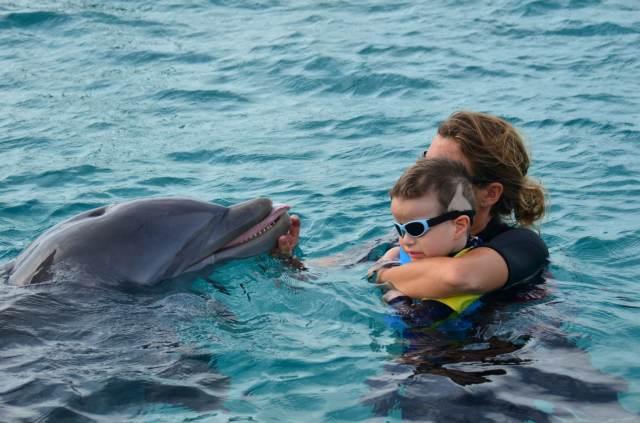 Delphintherapie Curacao 2014: Bild 13 von 66