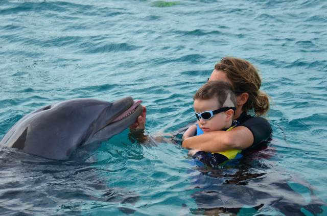 Delphintherapie Curacao 2014: Bild 14 von 66