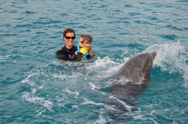 Delphintherapie Curacao 2014: Bild 18 von 66
