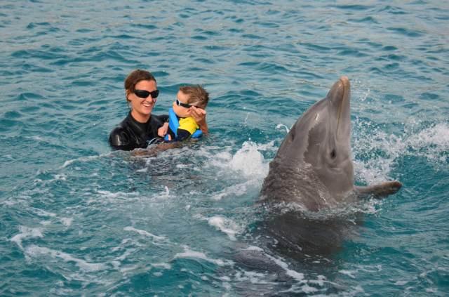 Delphintherapie Curacao 2014: Bild 19 von 66
