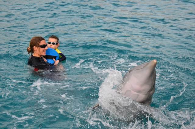 Delphintherapie Curacao 2014: Bild 20 von 66