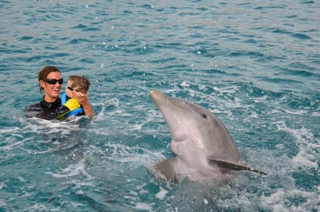 Delphintherapie Curacao 2014: Bild 21 von 66