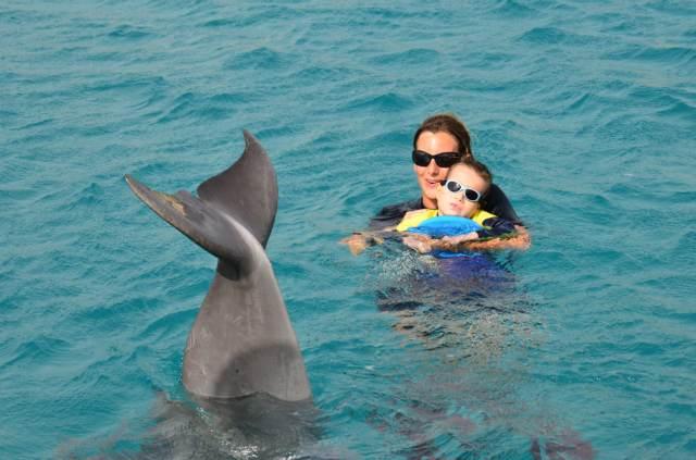 Delphintherapie Curacao 2014: Bild 22 von 66