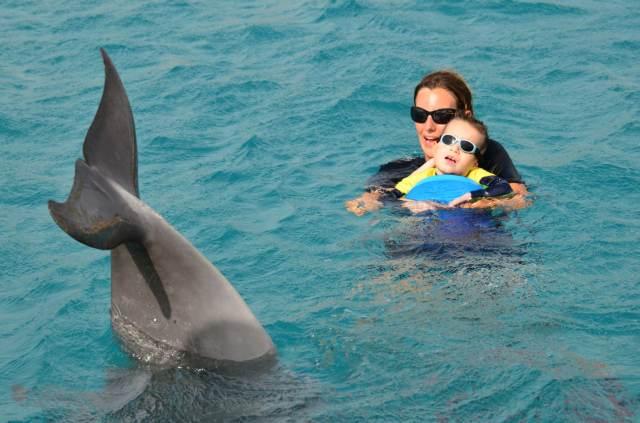 Delphintherapie Curacao 2014: Bild 23 von 66