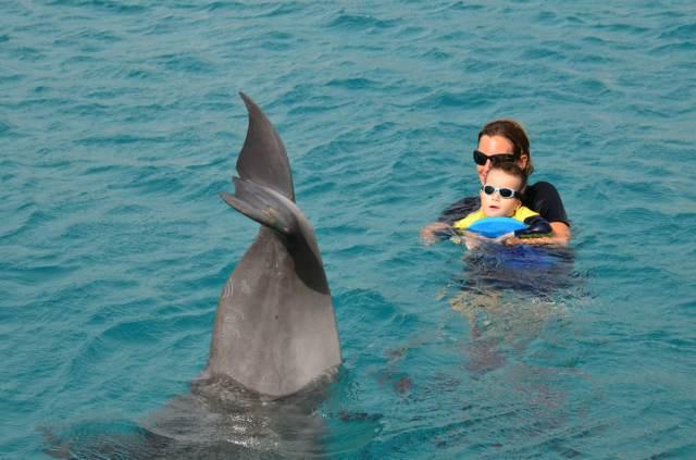 Delphintherapie Curacao 2014: Bild 24 von 66