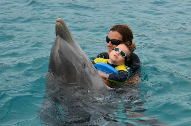 Delphintherapie Curacao 2014: Bild 26 von 66