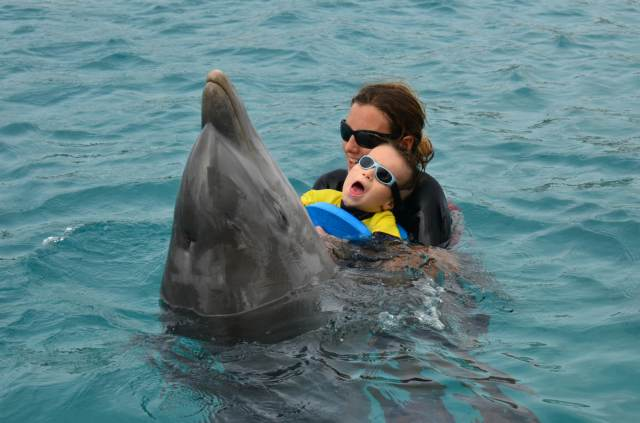 Delphintherapie Curacao 2014: Bild 27 von 66
