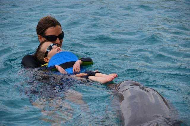Delphintherapie Curacao 2014: Bild 32 von 66