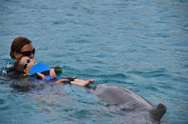 Delphintherapie Curacao 2014: Bild 33 von 66