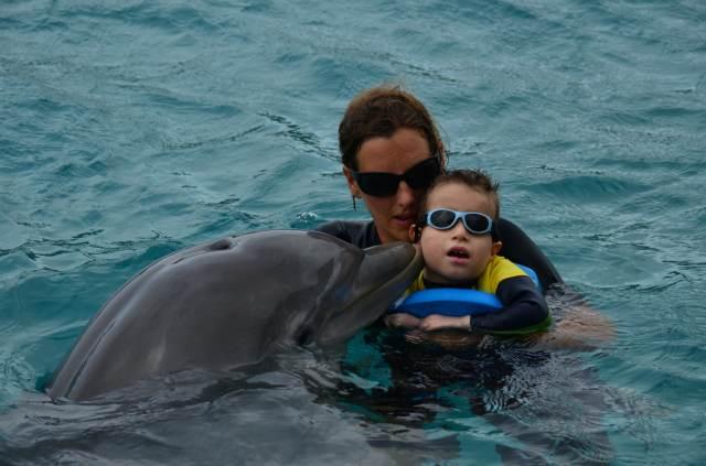 Delphintherapie Curacao 2014: Bild 35 von 66