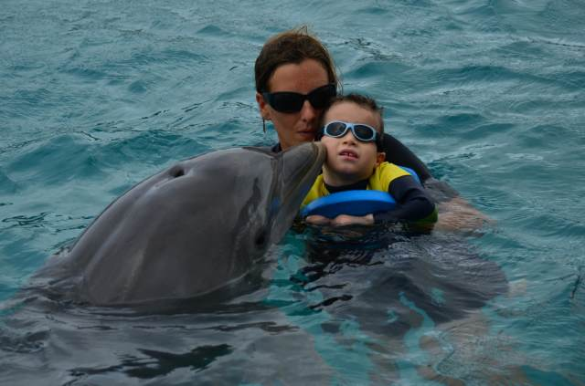 Delphintherapie Curacao 2014: Bild 36 von 66