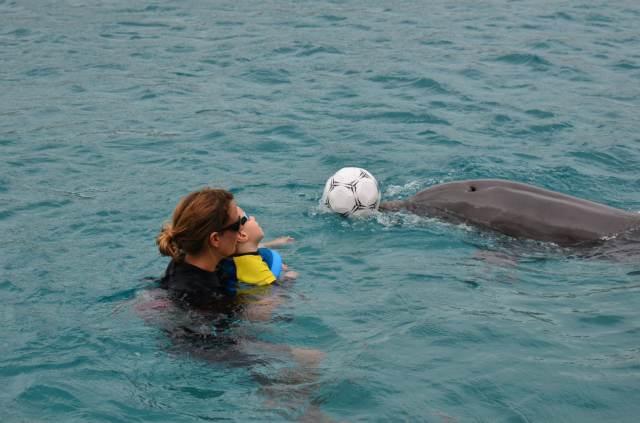Delphintherapie Curacao 2014: Bild 40 von 66