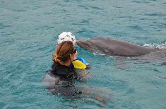 Delphintherapie Curacao 2014: Bild 41 von 66