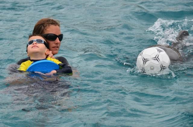 Delphintherapie Curacao 2014: Bild 42 von 66