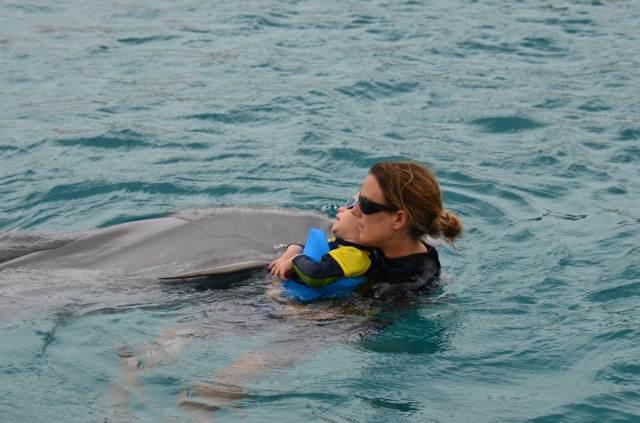 Delphintherapie Curacao 2014: Bild 43 von 66