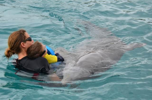 Delphintherapie Curacao 2014: Bild 45 von 66