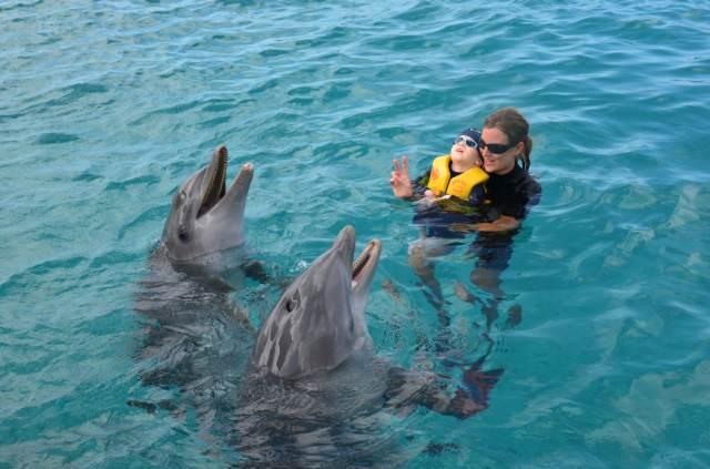 Delphintherapie Curacao 2014: Bild 52 von 66