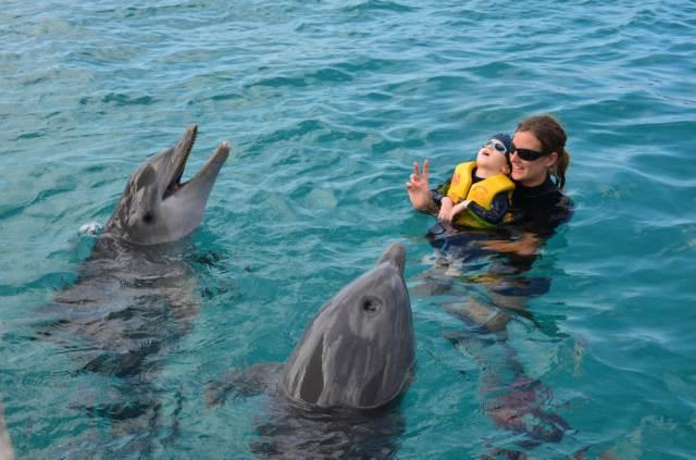Delphintherapie Curacao 2014: Bild 53 von 66