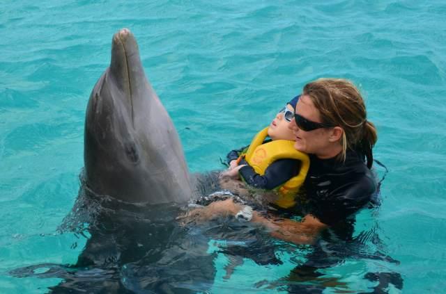 Delphintherapie Curacao 2014: Bild 55 von 66