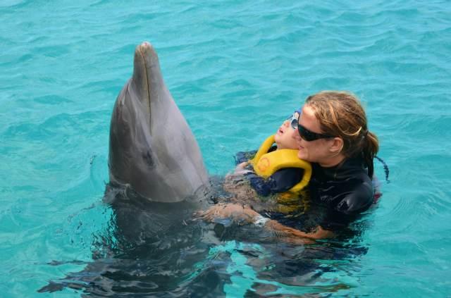 Delphintherapie Curacao 2014: Bild 56 von 66