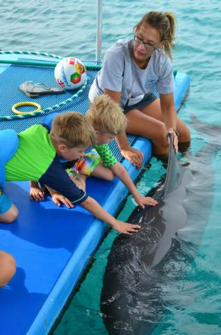 Delphintherapie Curacao 2014: Bild 60 von 66