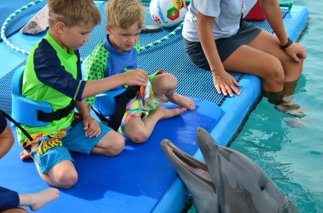 Delphintherapie Curacao 2014: Bild 62 von 66