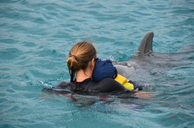 Delphintherapie Curacao 2014: Bild 63 von 66