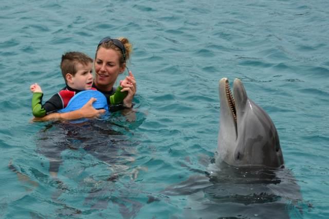 Delphintherapie Curacao 2015: Bild 4 von 47