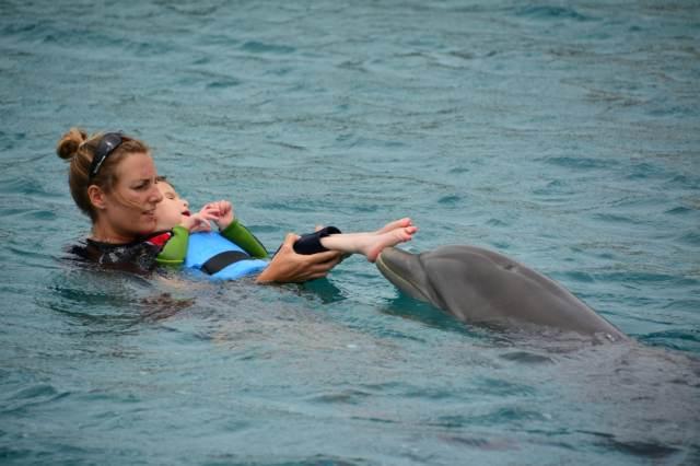 Delphintherapie Curacao 2015: Bild 5 von 47