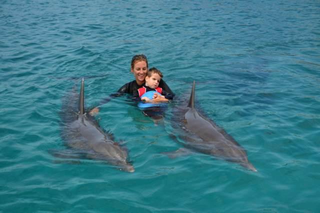 Delphintherapie Curacao 2015: Bild 13 von 47