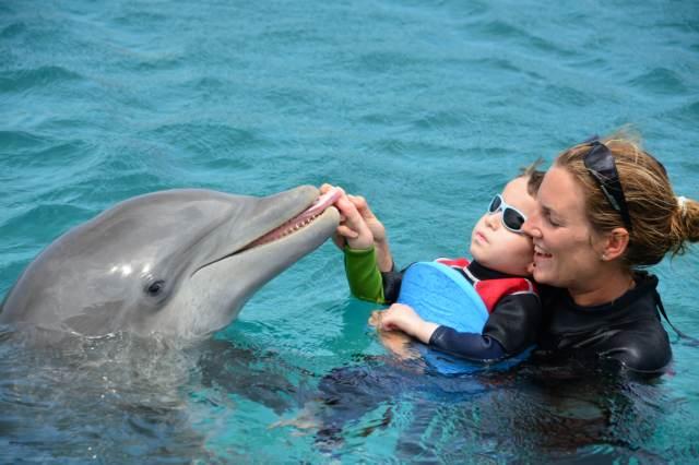 Delphintherapie Curacao 2015: Bild 16 von 47