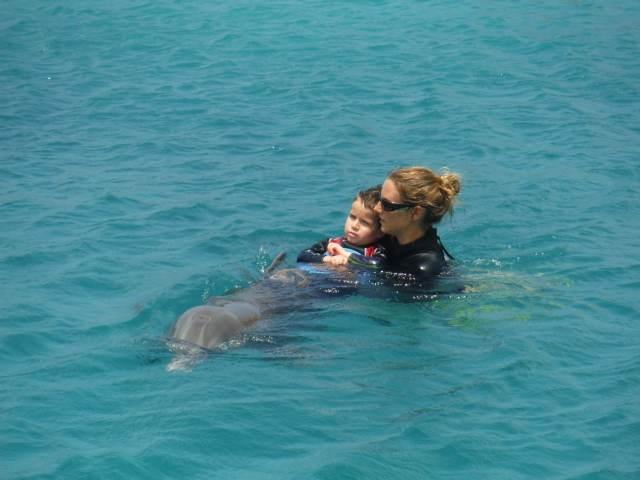 Delphintherapie Curacao 2015: Bild 28 von 47
