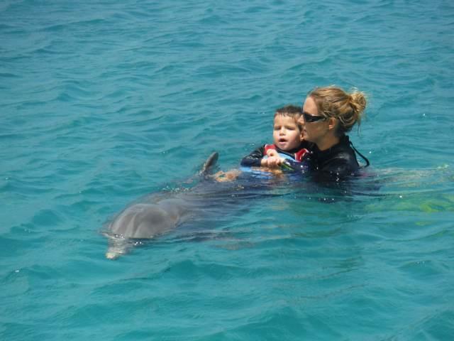 Delphintherapie Curacao 2015: Bild 29 von 47